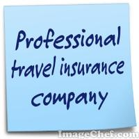 Professional travel insurance company